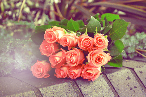 一段不被接受的爱情,需要的不是伤心,而是时间,一段可以用来遗忘的时间。一颗被深深伤了的心,需要的不是同情,而是明白。<br />