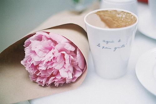 一只专心准备的花胜过千朵玫瑰<br />