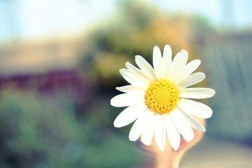 每个不谈恋爱的人,心中都装着一个不可能的人。<br />