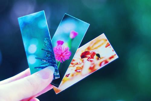 特漂亮的早晨好问候语带鲜花动图阳光早上好问候语经典句子大全