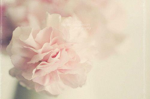 甜蜜暖心的句子,入目无他人,四下皆是你。