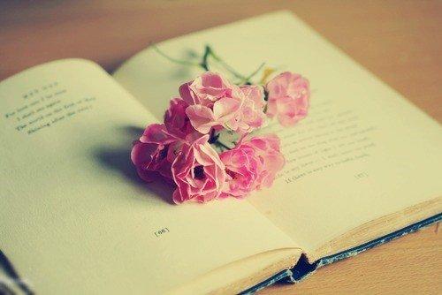 我的忍气吞声,我的逆来顺受,我的适可而止,都是因为太爱你。