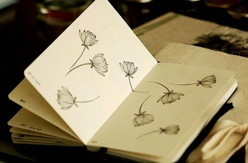 温柔干净的文案短句,多少岁不重要,岁岁平安才重要,但愿日子不愁,心有期盼,眼之所见,抬头满眼皆是温柔