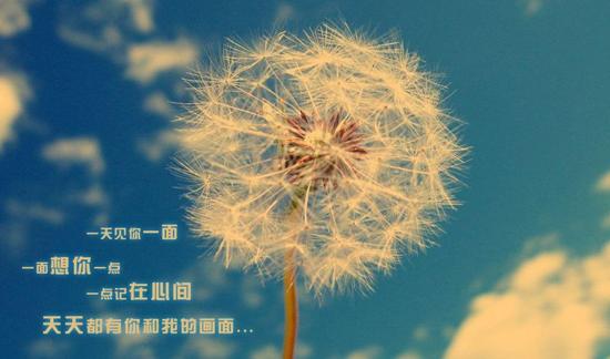 今天扫完今天的落叶,明天的树叶不会在今天掉下来,不要为明天烦恼,要努力地活在今天这一刻。